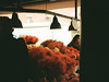 Pike Place Market (Alexander Lorden) Tags: pikeplacemarket kodak film street flowers market photography shadow people red 35mm