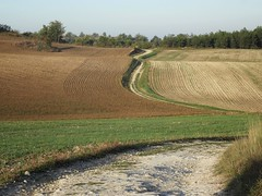 Cheminer. (France-♥) Tags: 1045 paysage campagne champs chemin gr65 france way road fields countryside lascabanes field grass lines lignes pattern
