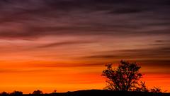 Transition into Lightness (Michael E(xplorer) S.) Tags: idaho silhouette cold sunrise