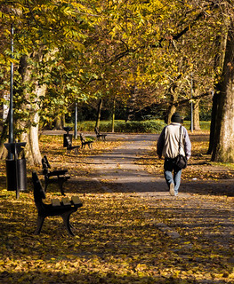 Hike through autumn