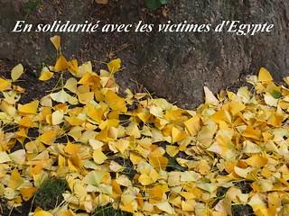 En solidarité avec les victimes d'Egypte