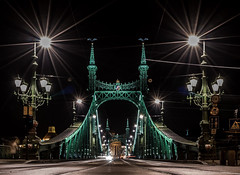 Liberty Bridge (mcalma68) Tags: liberty bridge budapest hungary night architecture