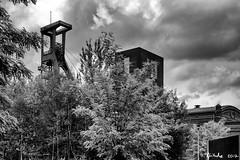 Treppe für Riesen (Klaus Fritsche) Tags: weltkulturerbe zollverein schwarzweis