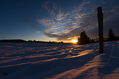Jura at sunset (sonyalpha7II) Tags: snow sunset jura trees nature forest montain winter