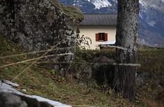 la maison aux volets rouges (bulbocode909) Tags: valais suisse ravoire maisons troncs arbres volets rochers montagnes nature vert rouge automne neige