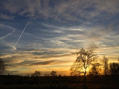 Ludshott Sunset (Marc Sayce) Tags: contrail sunset sundown clouds trees ludshott common headley down grayshott hampshire national trust heathland autumn winter november 2017