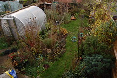 Looking Down on the Back Garden - November 2017 (basswulf) Tags: backgarden polytunnel autumn d40 1855mmf3556g lenstagged unmodified 32 image:ratio=32 permissions:licence=c 20171122 201711 3008x2000 garden normcres oxford england uk lookingdownonthegarden