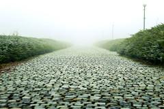 Foggy... (Hasan Yuzeir 📷) Tags: cloud path white fog foggy hasanyuzeir weather canon 1300d