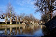 The river Morges crossing the city of Morges (Carandoom) Tags: 2017 morges switzerland water reflection trees park eau river rivière lac ville arbre ciel parc