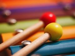 #macromondays #stick (bertrandpoux) Tags: stick macromondays hmm kid xylophone metal wood colorful