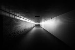 The shortcut (Jonsvan) Tags: unitedkingdom england streetphotography reading leadinglines bw lighting nightphotography tunnel streetlight blackandwhite path light