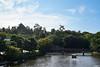 【最棒的夥伴】六、Sony RX1R |33 (lscott200) Tags: tripandcamera japan 旅行 相機 日本 rx1r sony sanin shimane matsue 山陰地方 山陰地區 島根県 松江市 松江 松江城