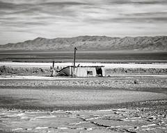 Sinking Fortunes (dejavue.us) Tags: california d850 abandoned nikon desert saltdale 180350mmf3545 shack building mojavedesert blackandwhite monochrome nikkor