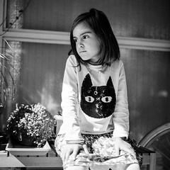 Cat's Eyes (yoannpupat) Tags: fujiacros100 sl66