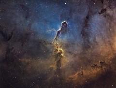 The Elephant's Trunk Nebula (IC1396) (manuel.huss) Tags: elephant trunk nebula space astronomy telescope astro astrophotography night sky cepheus narrowband deepsky universe cosmos color star astrometrydotnet:id=nova2357963 astrometrydotnet:status=solved