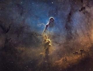 The Elephant's Trunk Nebula (IC1396)