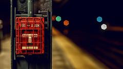 """Ring the Alarm"" (36D VIEW) Tags: bokeh sony mirrorless mcrokkorpf58mm14 58mm bokehandbeyond bokehlicious minolta vintage legacy classic"