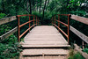 River Trail (christine.gleason) Tags: starved rock illinois chicago fall summer wood nature forest river bridge path travel explore fujifilm vsco green light canyon weekend xt10 texture perspective rule thirds hike hiking trees