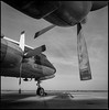 DC-7_Coolidge 2106 Hasselbald 501CM-Edit_SCY (syoumans07) Tags: hasselblad 501cm fujifilm acros coolidge arizona