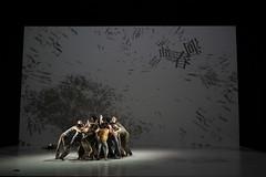 _9041270 (黎島羊男) Tags: 雲門 關於島嶼 林懷民 formosa cloudgatedancetheatre cloudgate dance theatre linhwaimin olympus em1markii zuiko 1454mm