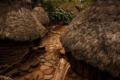 Konso Village (Rod Waddington) Tags: africa african afrika afrique ethiopia ethiopian etiopia konso village omo omovalley huts path tree pumpkin vine outdoor historical sundaylights