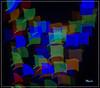 Guirlandes (MyLavie) Tags: studio objectif cache guirlandes lumières couleurs pentax myla mylènelavie