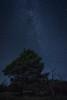 Nuit (Théo G-N) Tags: cielo sky night nuit notte étoiles stelle stars voie lactée arbre albero lune luna moon tree nature paysage landscape paesaggio