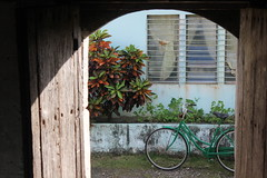 Ivana Bicycle (Huub Pics) Tags: philippines islands bicycle portrait view 550d flowers travel explore love asia tropical window