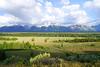 Teton Range from Teton Point Turnout, Wyoming (Andrey Sulitskiy) Tags: usa wyoming grandteton