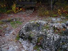 Der Kaisersitz / The Emperor's chair (rudi_valtiner) Tags: sooserlindkogel wienerwald alpen alps kaiserstein harzberg wanderung20171109 herbst autumn fall badvöslau soos waldandacht niederösterreich loweraustria österreich austria autriche kaisersitz fels rock sitz chair