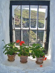 A Window @ Levant (MedievalRocker) Tags: cornish mining enginehouse