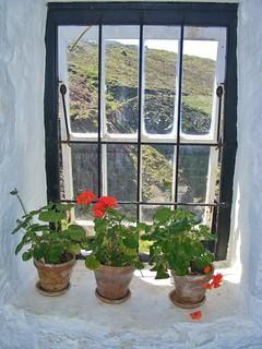 A Window @ Levant