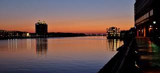 Savannah River Morning