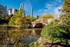 Fall 2017-52.jpg (jbernstein899) Tags: newyorkcity centralpark