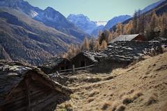 Le Louché (bulbocode909) Tags: valais suisse arolla lelouché raccards montagnes nature alpages automne paysages forêts arbres mélèzes neige orange bleu valdhérens