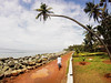 GOPR1080-2 (Mariss Balodis) Tags: india kerala tropics tropical summer south endless culture nature coast canon photography vacation travel explore muslim landscape colors holiday trip palm tree coconut