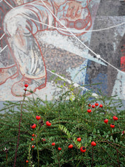 Das Rot. / 27.11.2017 (ben.kaden) Tags: berlin marzahn marzahnerpromenade walterwomacka arbeitfürdasglückdesmenschen 1989 kunstderddr kunstimöffentlichenraum kunstambau kunstimstadtraum 2017 27112017 rot
