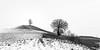 Wintereinbruch (uhu's pics) Tags: emmental schweiz landscape nature landschaft natur bw white black weiss schwarz hills sky trees snow hügel himmel bäume schnee winter fujinon xp2 xpro2 xpro fuji fujifilm