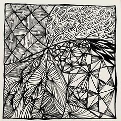 Zentangle 12-7-17 (f l a m i n g o) Tags: white black pen ink draw pattern art zentangle explore