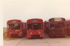 Acq. photo - MB's - possibly Radlett - c1975 . (busmothy) Tags: merlin mb mbs aec