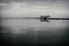 (z e d s p i c s™) Tags: keszthely balaton bw blackwhite magyarország monochrome hungary hongarije ungarn plattensee zedspics 1702 port reflection landscape lakescape nik