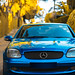 Autumn Blue benz