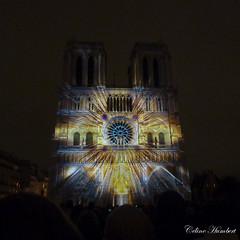 Notre Dame de Paris (cyl_photos) Tags: notredamedeparis notredame paris cathédrale lumière architecture damedecoeur couleur