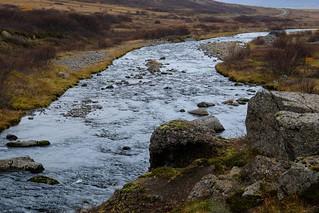 IMG_9342 Westfiords, Iceland