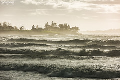 Big Waves at Higgins Beach (rodeonexis - photography) Tags: hurricanemaria swell massivewaves higginsbeach coastalmaine iconicmaine scenicmaine landscape roughocean canon5dmarkiii sigmalens