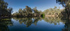 Billabourie (Cisc Pics) Tags: billabourie hilston newsouthwales australia river water reflection reflections trees lachlanriver kidmanway nature panorama panoramic stitched morning nikon nikkor d7000 dx 18200mm