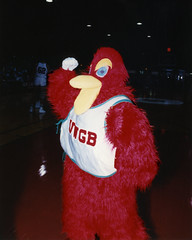 fuzzy-red-phoenix-mascot-024