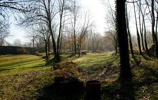 Bosc de Tosca