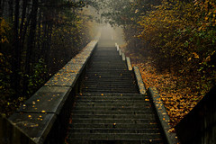 """The Steps to the Monument """"Creators of the Bulgarian State"""" Shumen / Bulgaria (Hasan Yuzeir 📷) Tags: steps monument shumen bulgaria hasanyuzeir fog foggy canon 1300d rainy autumn"""