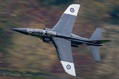RAF QinetiQ Alpha Jet ZJ647 'TESTER08' (Tom Dean.) Tags: corris 2017 tester zj647 raf nikond810